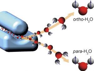 Ein elektrisches Feld (blauer Aufbau links) wirkt auf die Wassermoleküle wie ein Prisma und trennt so Para- und Ortho-Wasser. Illustration: Daniel A. Horke, CFEL/DESY